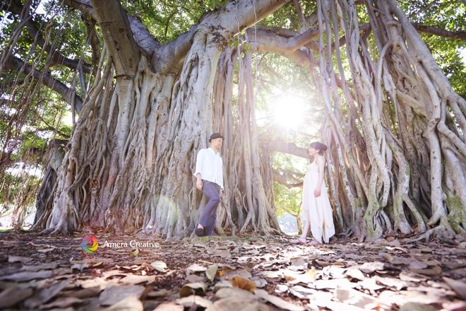 大きなガジュマルの木 #3 @ Kapiolani Park